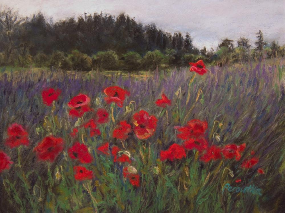 """""""Poppies Up Front"""" original fine art by Sarah Peroutka"""