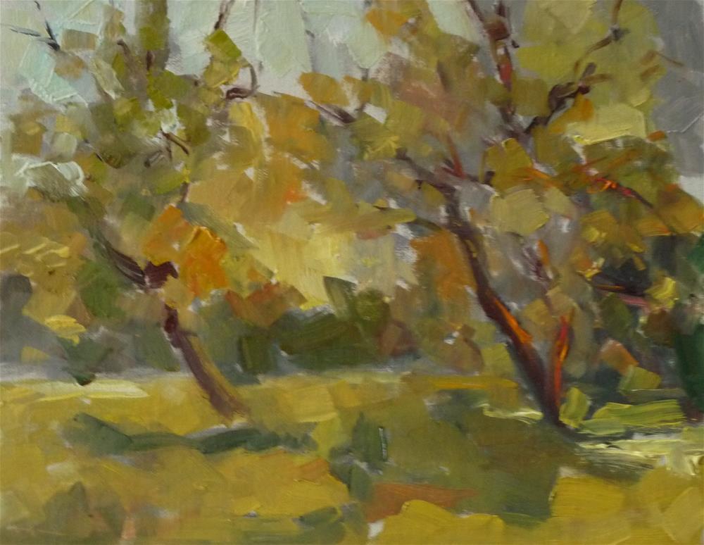 """Trees"" original fine art by Carol Josefiak"