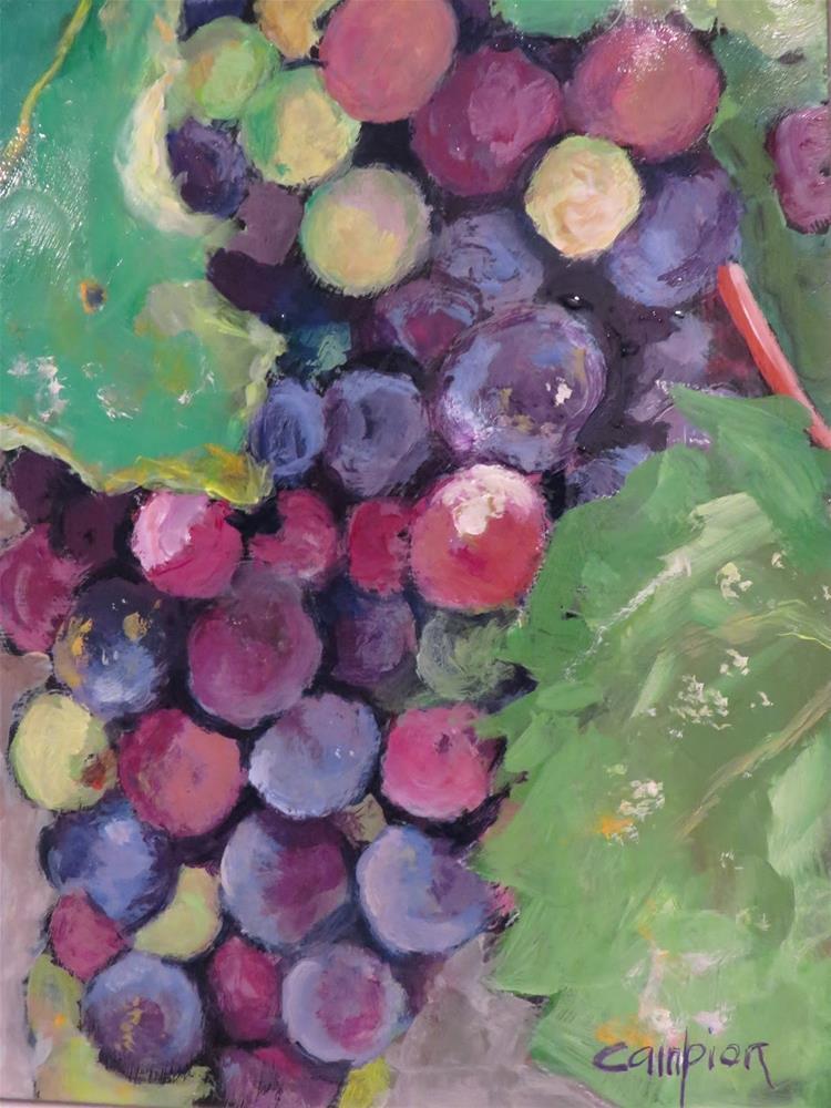 """690 Vineyard Beauty"" original fine art by Diane Campion"