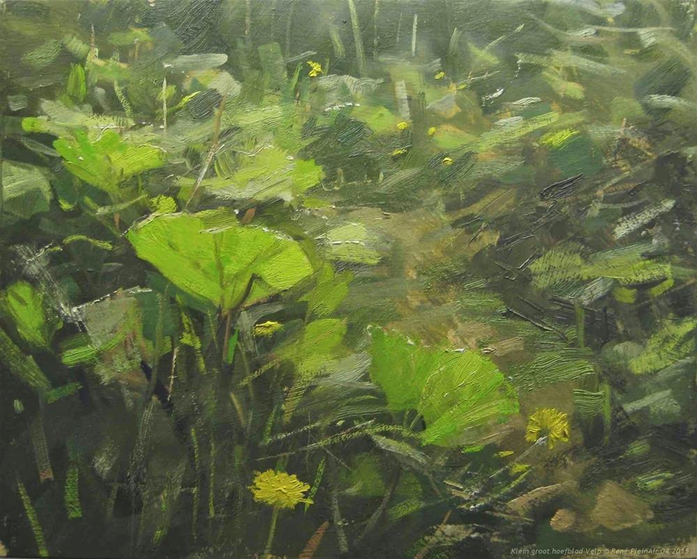 """Klein Groot Hoefblad Velp, The Netherlands"" original fine art by René PleinAir"