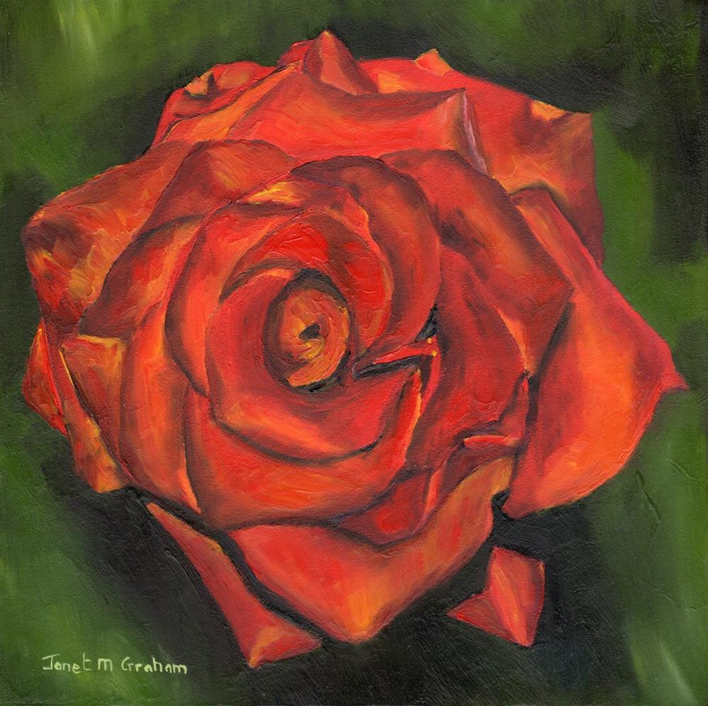 """Red Rose"" original fine art by Janet Graham"