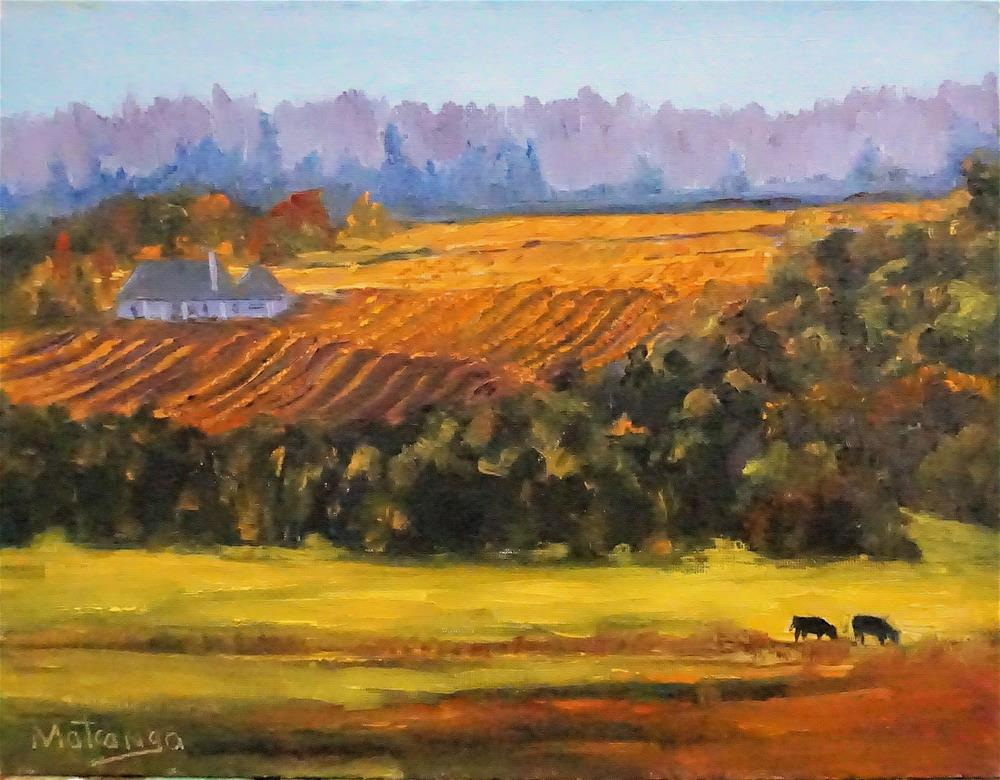 """Sonoma Fall Interlude"" original fine art by Patricia Matranga"