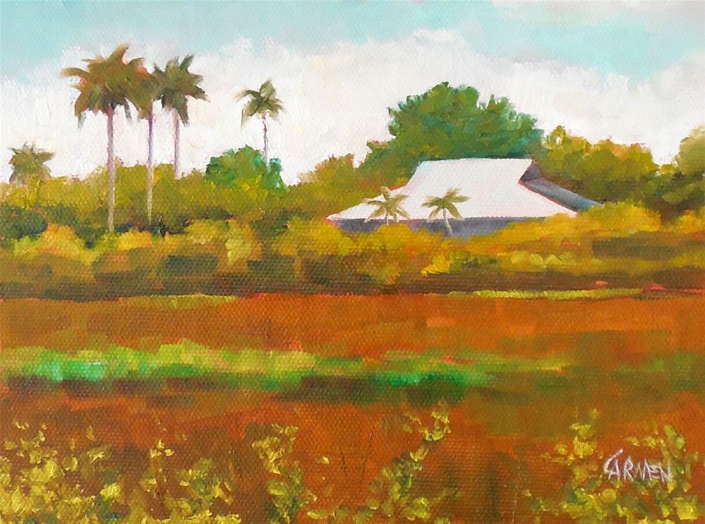 """River of Grass II, 8x6 Original Oil Painting on Canvas Panel, Everglades Landscape"" original fine art by Carmen Beecher"