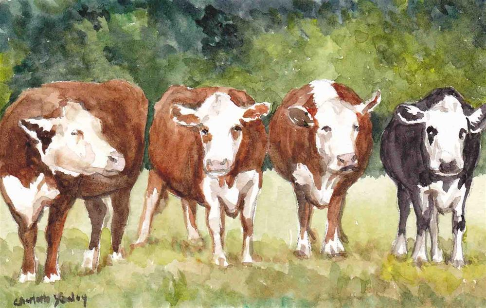 """Four Steer"" original fine art by Charlotte Yealey"