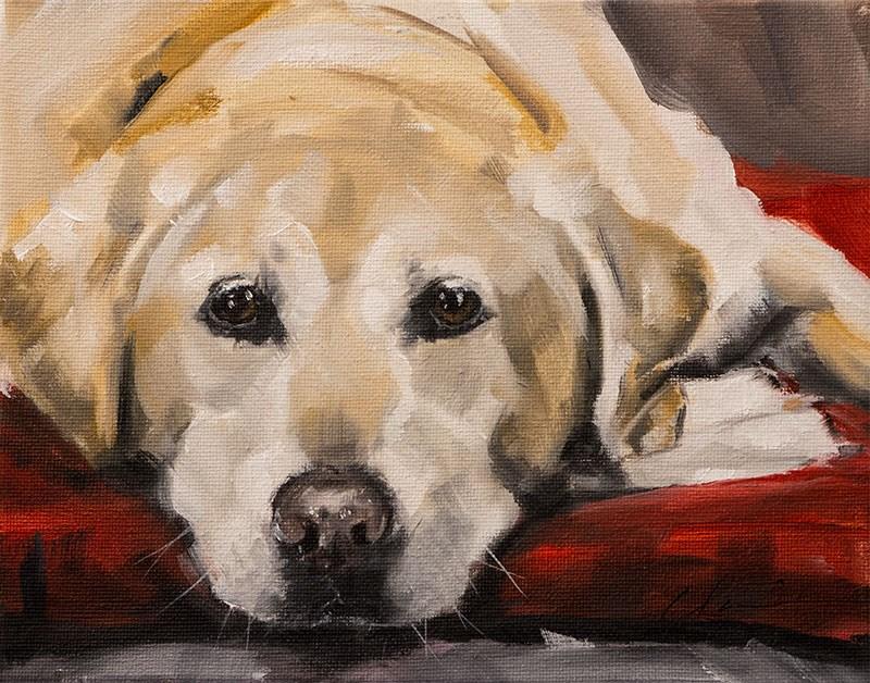 """""""PAINT MY DOG - Homer"""" original fine art by Clair Hartmann"""
