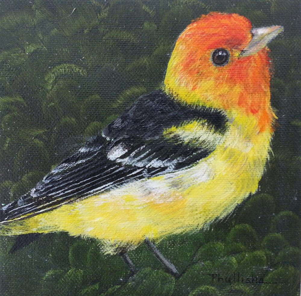"""Western Tanager"" original fine art by Phyllisha Hamrick"