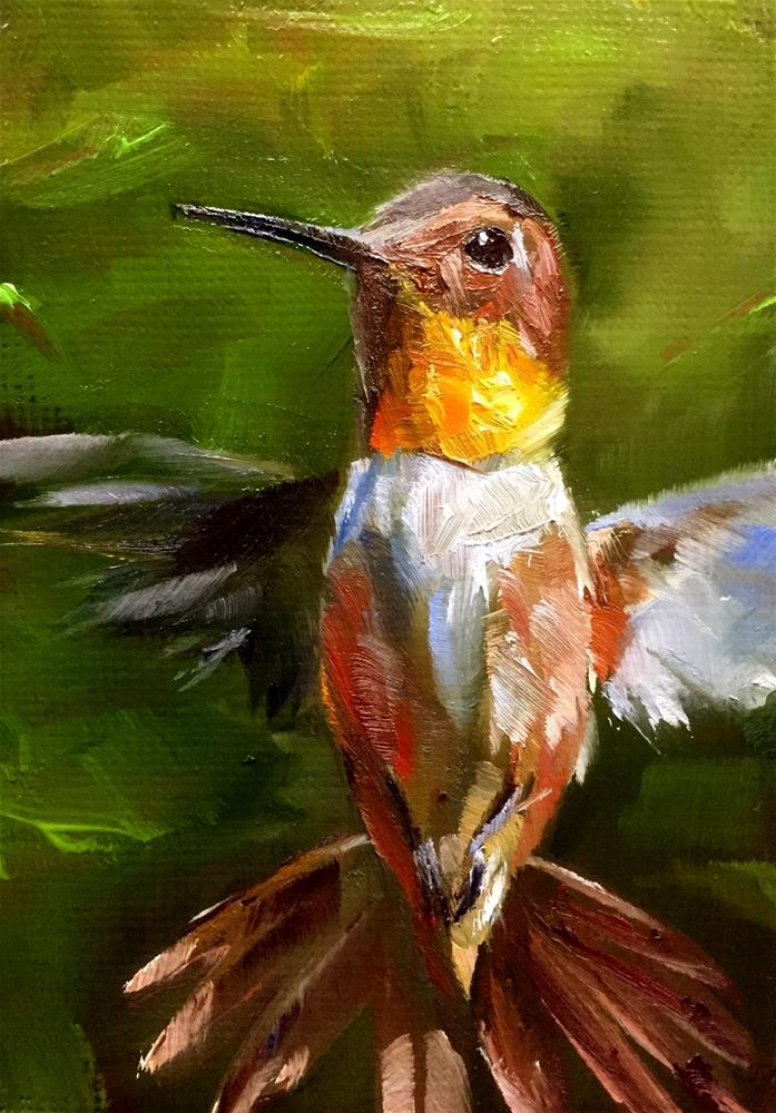 """""""Rufous Hovering"""" original fine art by Gary Bruton"""