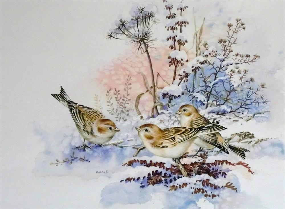 """Snow Buntings"" original fine art by Jean Pierre DeBernay"