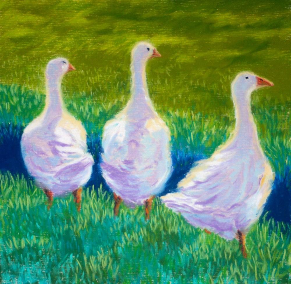 """""""Three White Ducks"""" original fine art by Jill Bates"""