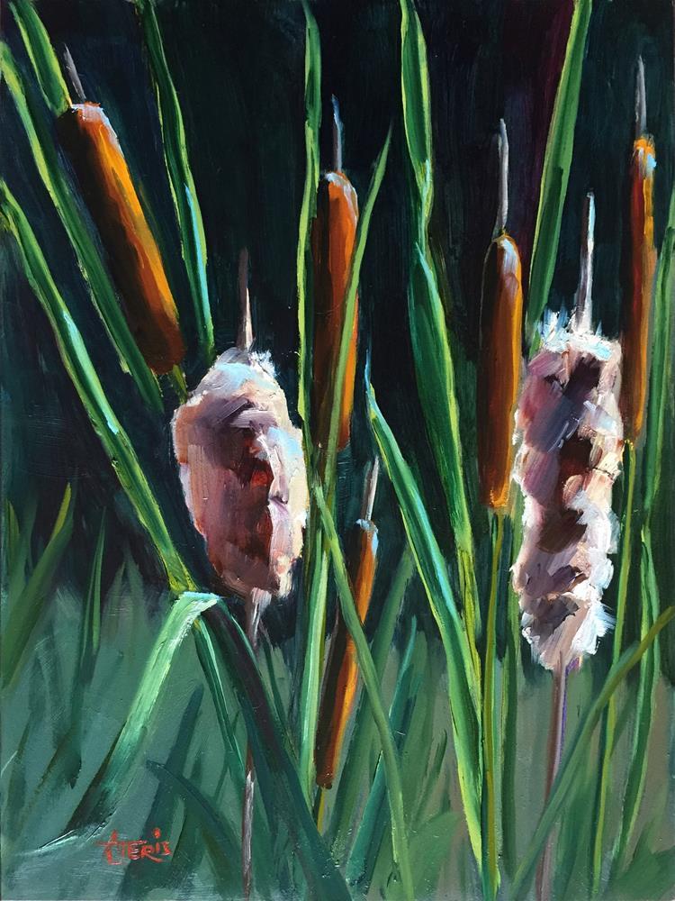 """Cattails"" original fine art by Andrea Jeris"