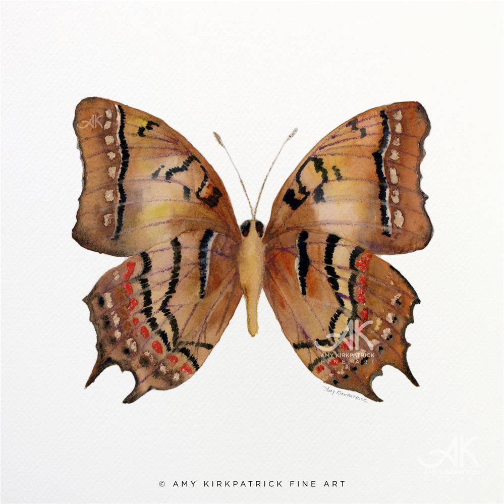 """""""#62 Galaxia Butterfly #0372"""" original fine art by Amy Kirkpatrick"""