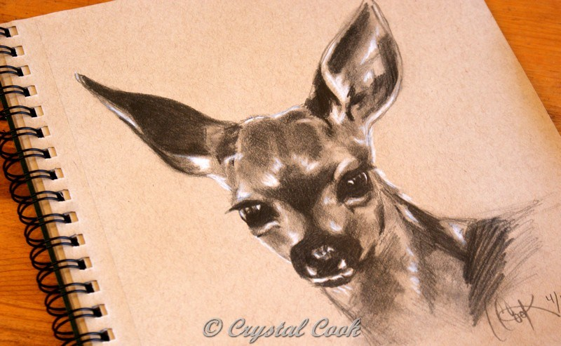 """""""Ever Watchfull"""" original fine art by Crystal Cook"""