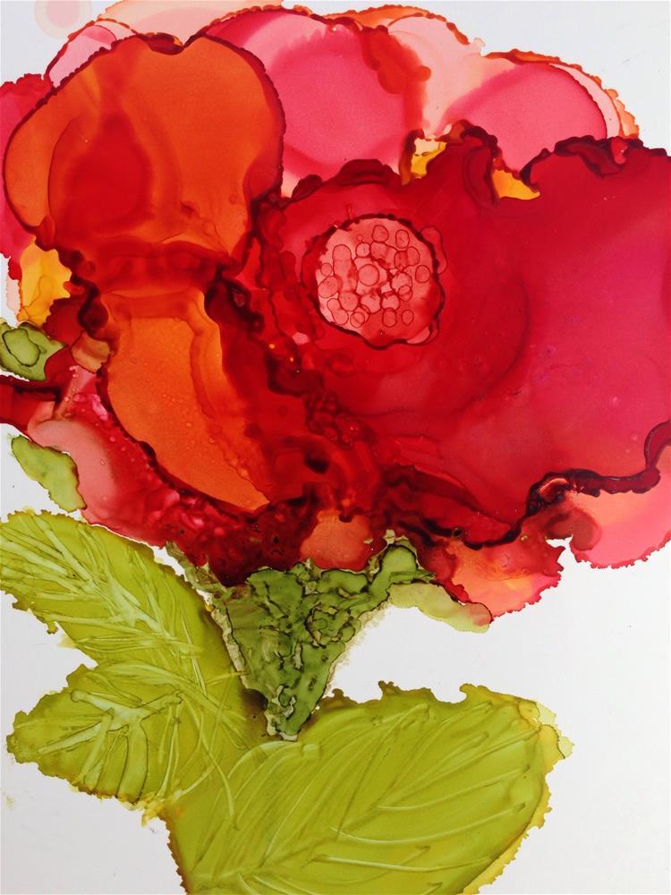"""""""Red Poppy"""" original fine art by Kris Alge"""