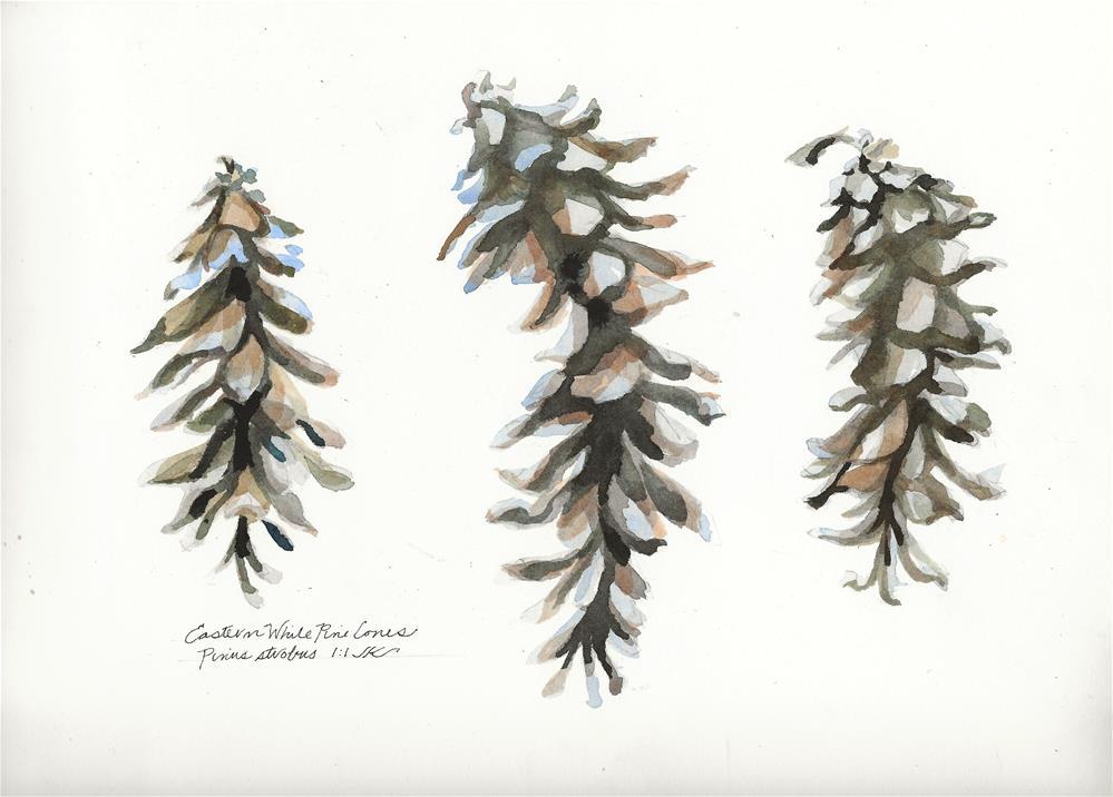 """Eastern White Pine Cones"" original fine art by Jean Krueger"