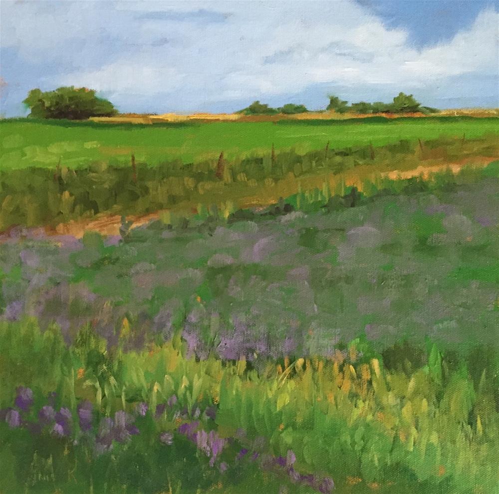 """Field Of Clover"" original fine art by Pam Holnback"