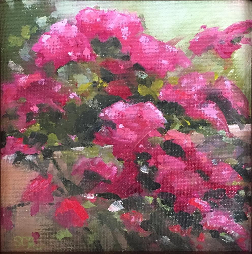 """""""Bougainvilla"""" original fine art by Sally Reichmuth"""