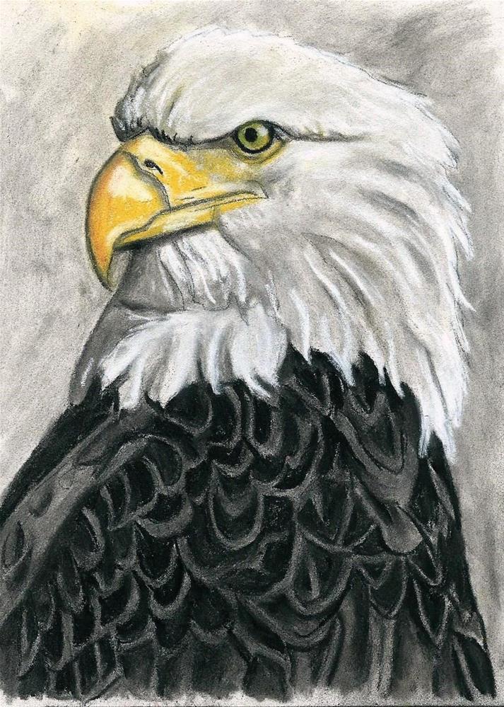 """""""Eagle Study #2"""" original fine art by Lisa Wiertel"""