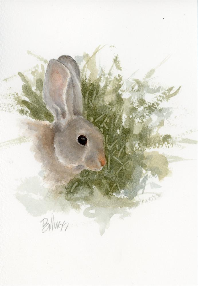 """""""Yet Another Cottontail Study I"""" original fine art by Susanne Billings"""