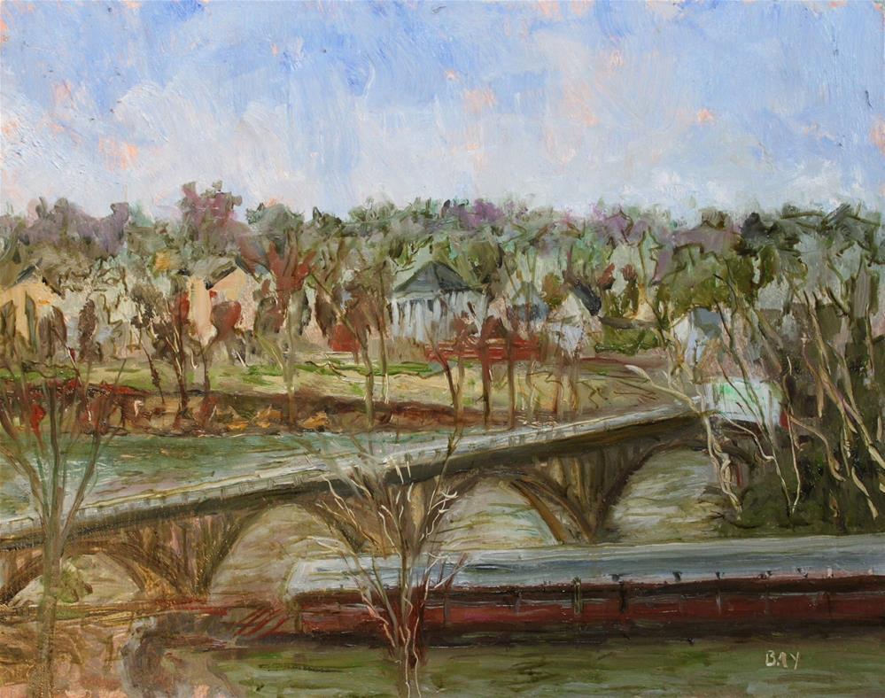 """""""CONGAREE VISTA"""" original fine art by barbara yongue"""