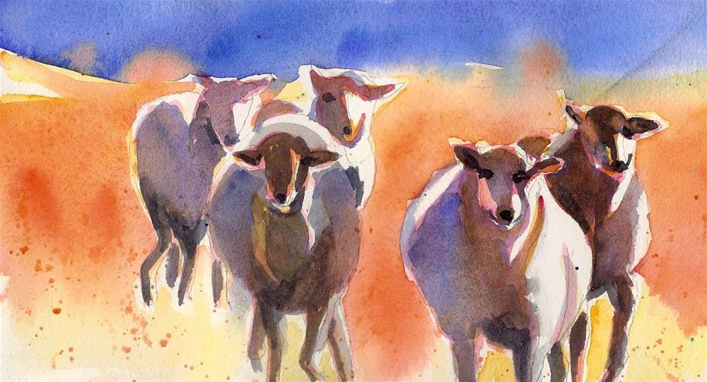 """Five Sheep Running"" original fine art by Reveille Kennedy"
