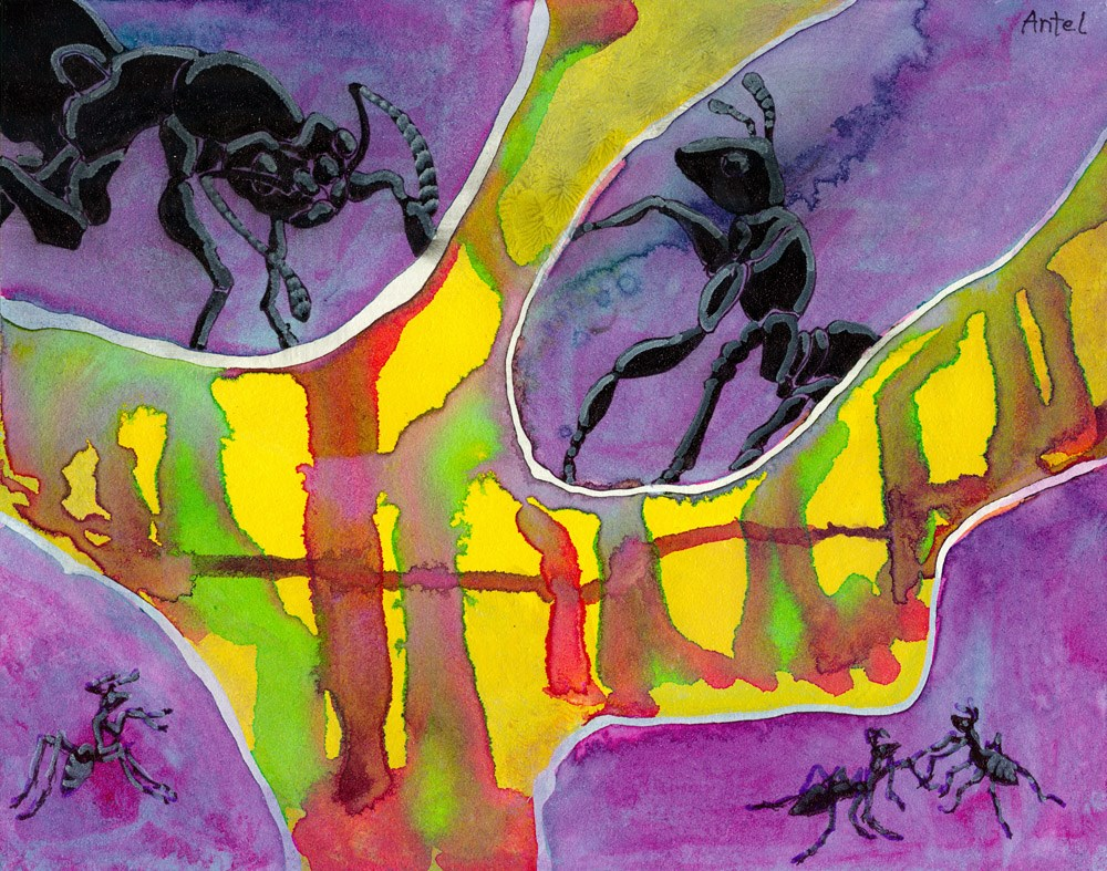 """Look to the Ant..."" original fine art by Rosemary Antel"