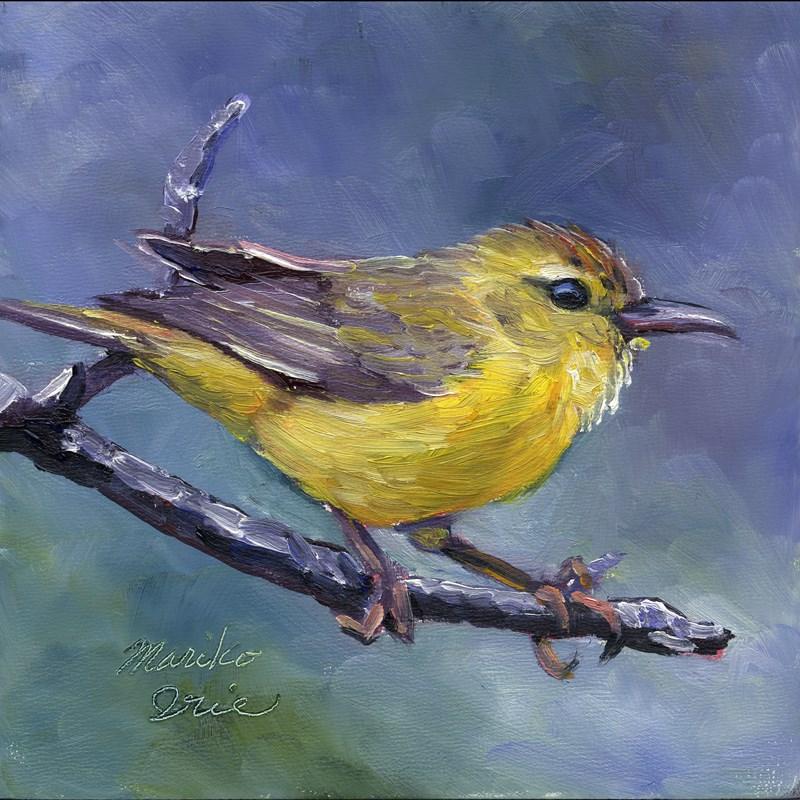 """""""Orange-crowned Warbler"""" original fine art by Mariko Irie"""
