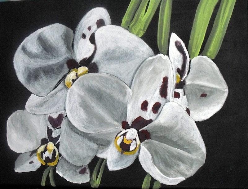 """Purple spotted white orchid"" original fine art by Dia Spriggs"
