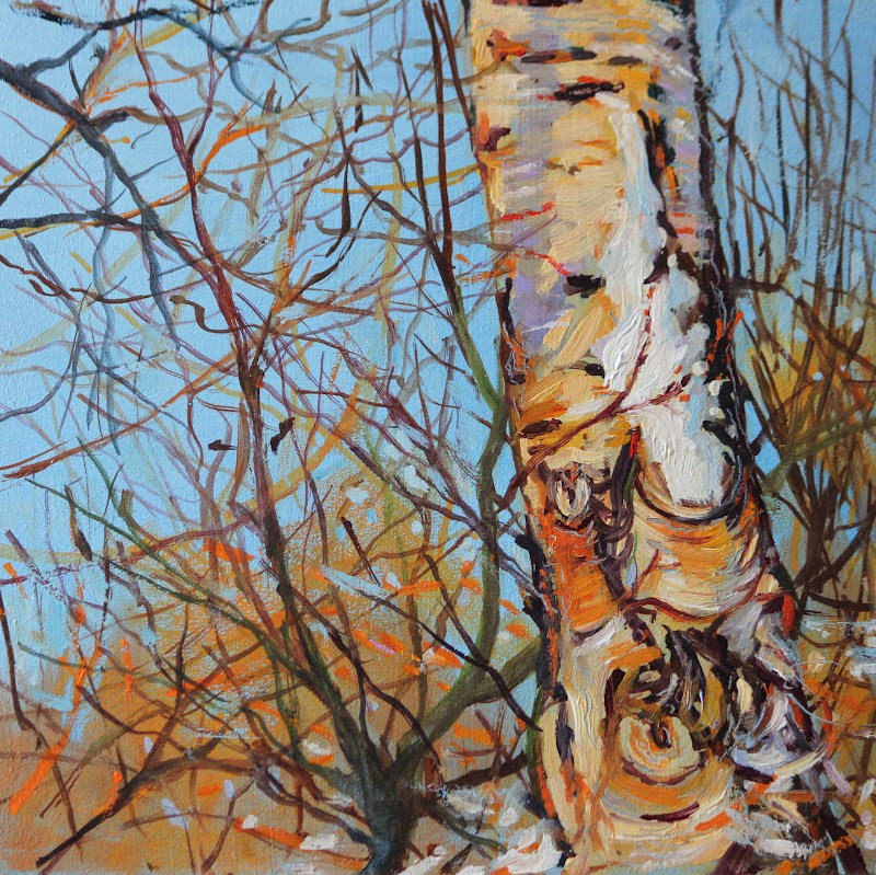 """Snow Birch"" original fine art by Ken Devine"