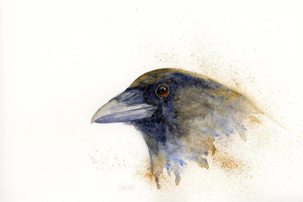 """""""Crow Study II"""" original fine art by Susanne Billings"""