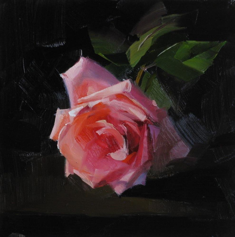 """Pink Rose Study 8"" original fine art by Qiang Huang"