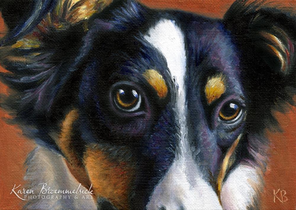 """""""Australian Shepherd"""" original fine art by Karen Broemmelsick"""