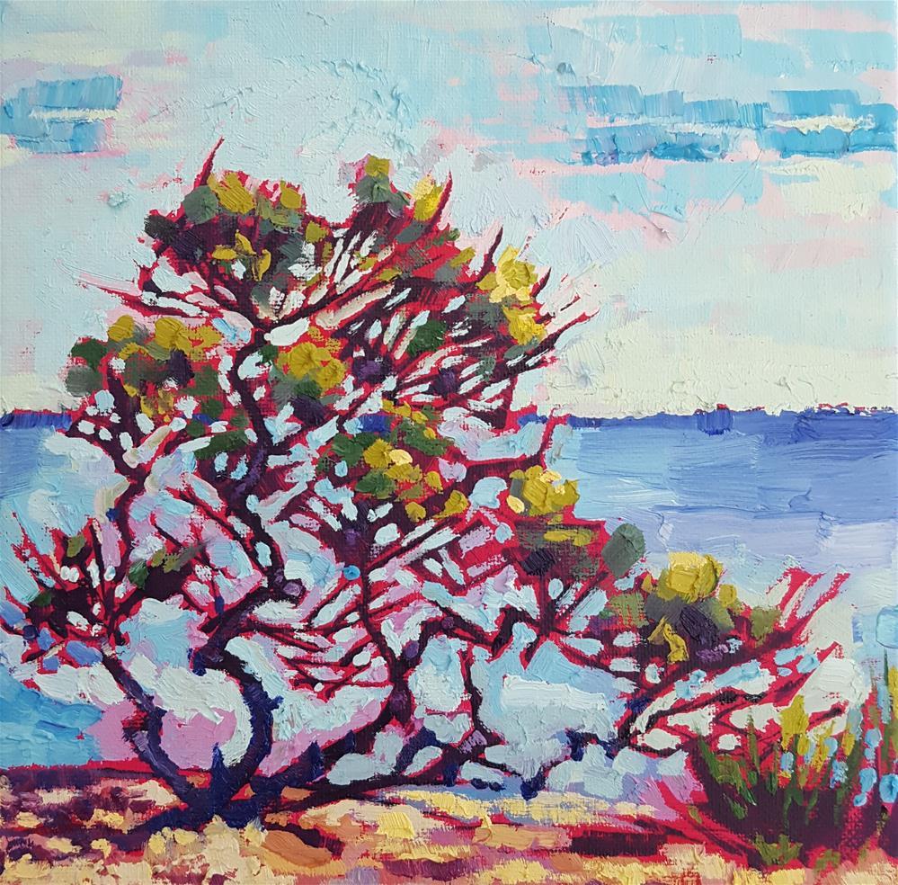 """Windswept - Spiky Tree on Beach"" original fine art by Bhavna Misra"