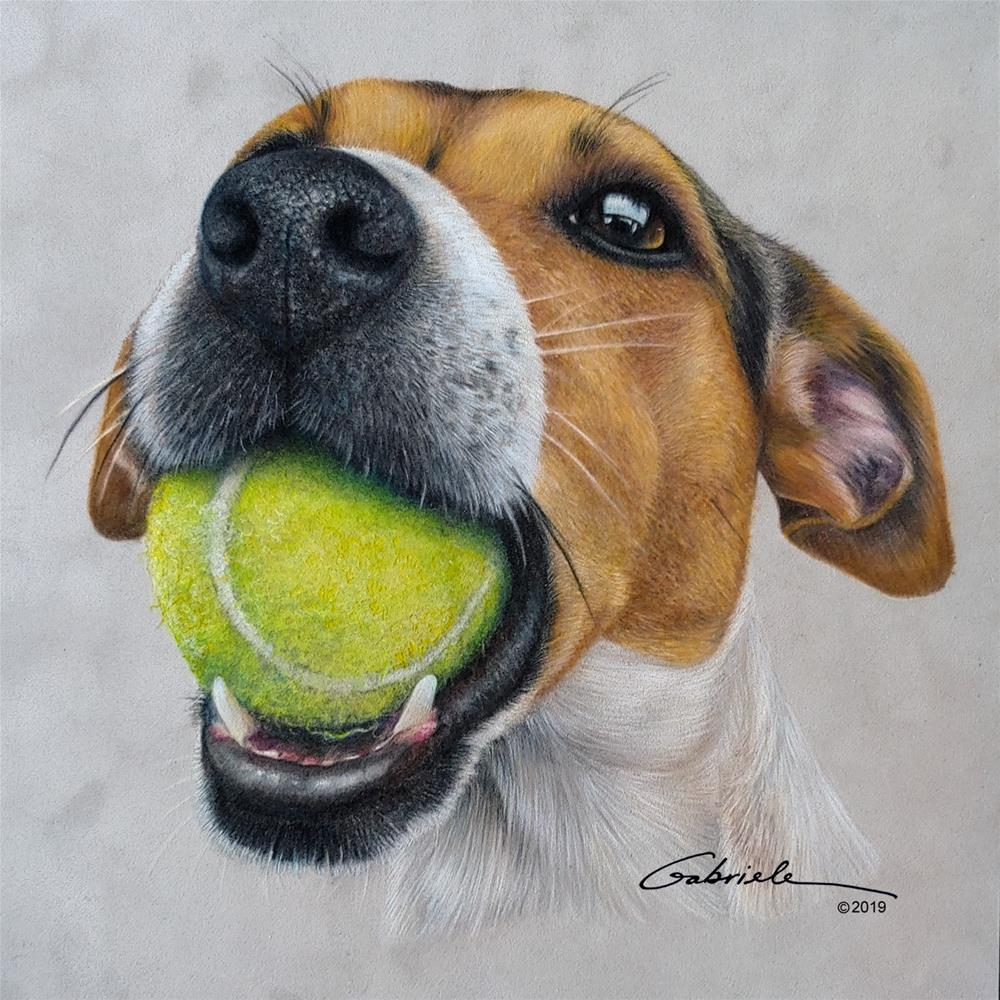 """JACK RUSSELL...lets play ball!"" original fine art by Gabriele Kolb"