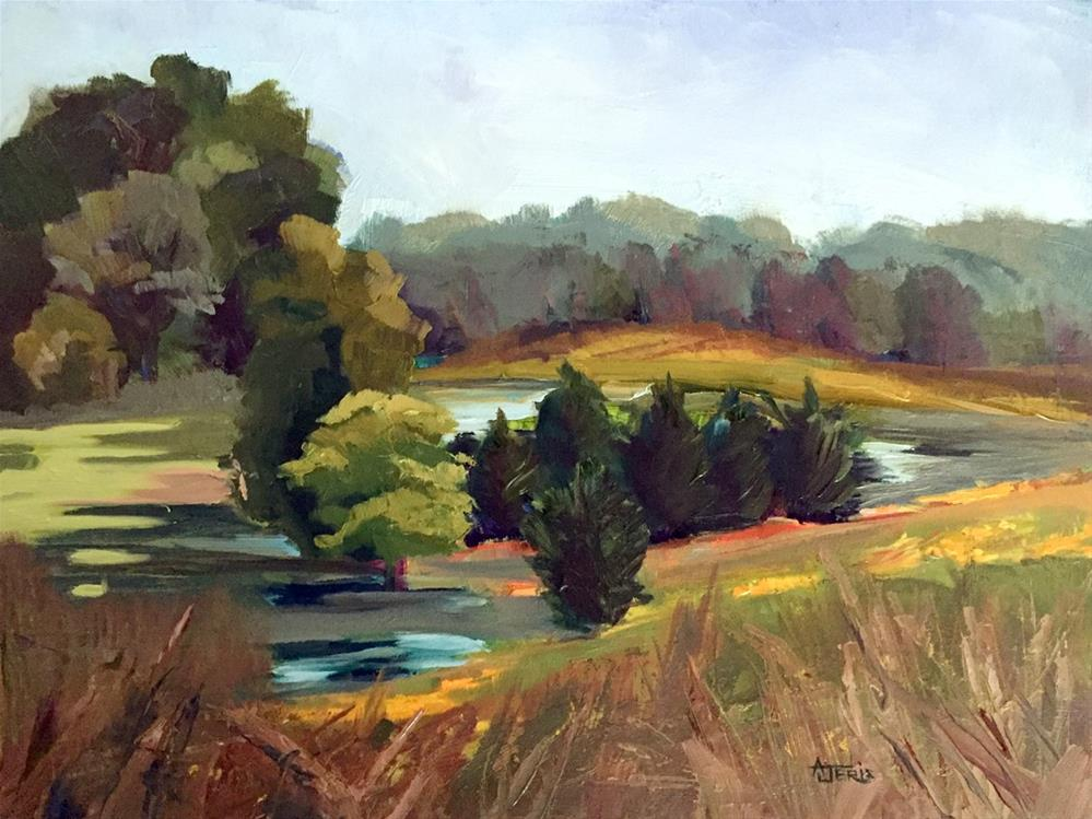"""""""Pond in the Valley"""" original fine art by Andrea Jeris"""