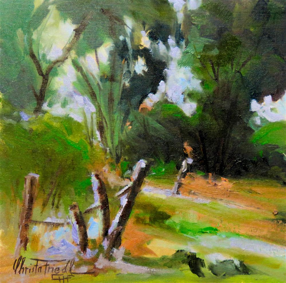 """The old fence"" original fine art by Christa Friedl"