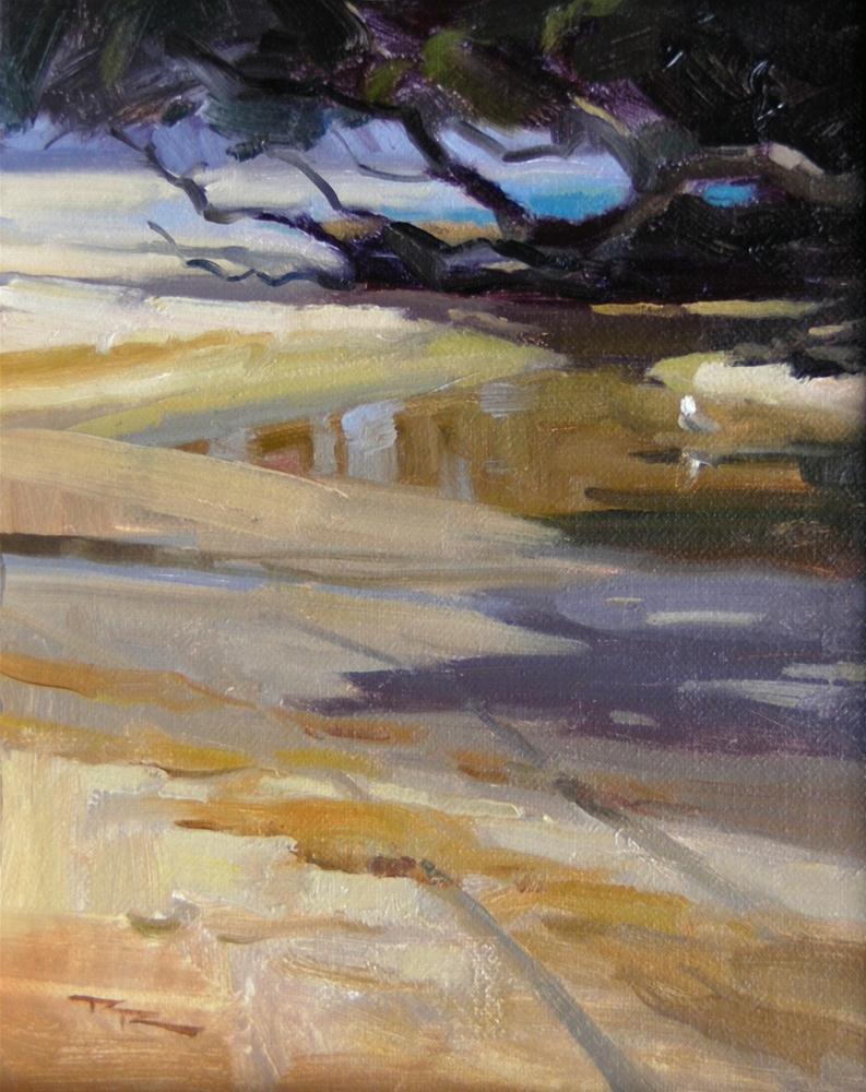 """Bathtime at Waipu Cove"" original fine art by Richard Robinson"