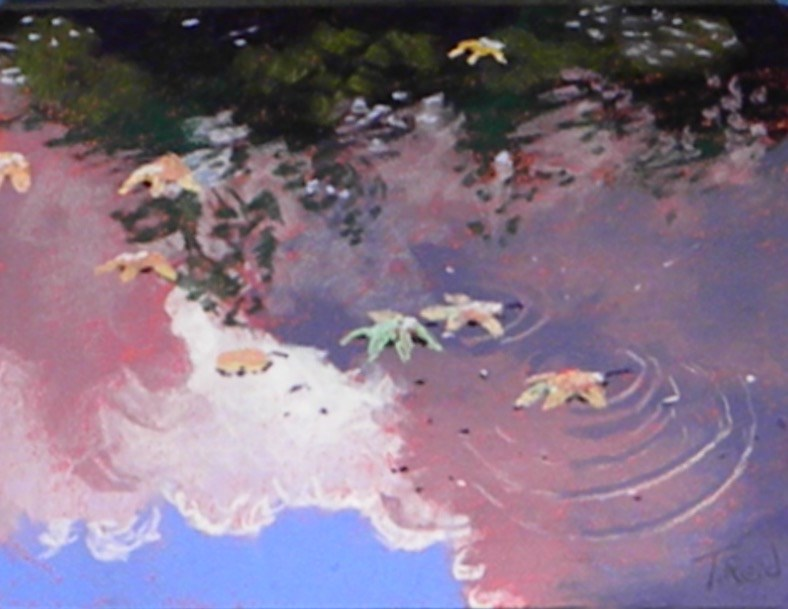 """""""Leaves and cloud reflections"""" original fine art by Toby Reid"""