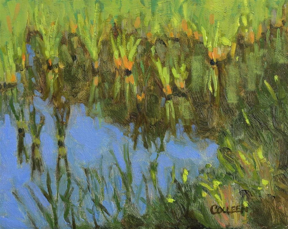 """Marsh Refelctions"" original fine art by Colleen Parker"