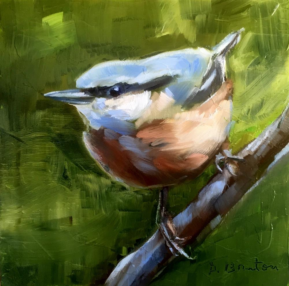 """Perched Nuthatch"" original fine art by Gary Bruton"