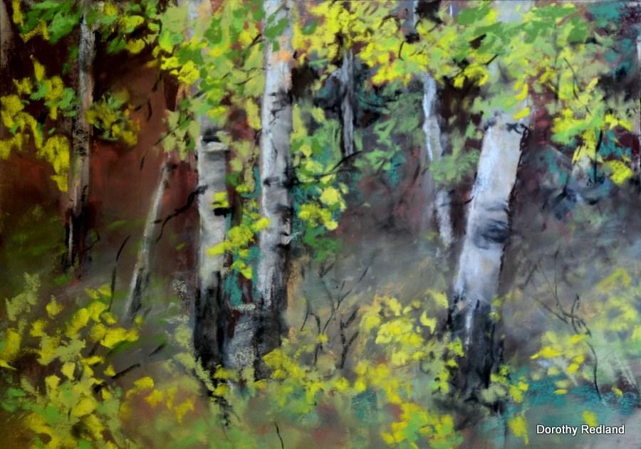 """Among the aspen0"" original fine art by Dorothy Redland"