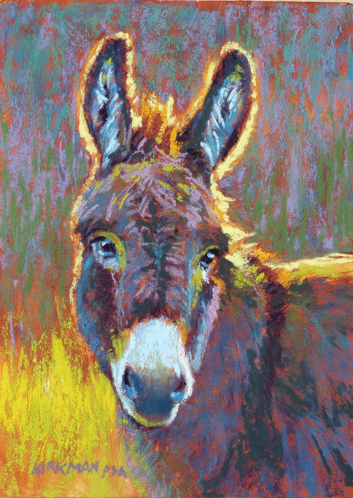 """Burro"" original fine art by Rita Kirkman"