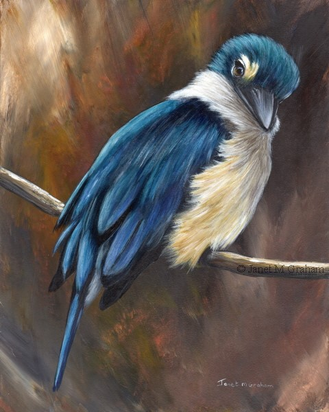 """Sacred Kingfisher No 4"" original fine art by Janet Graham"