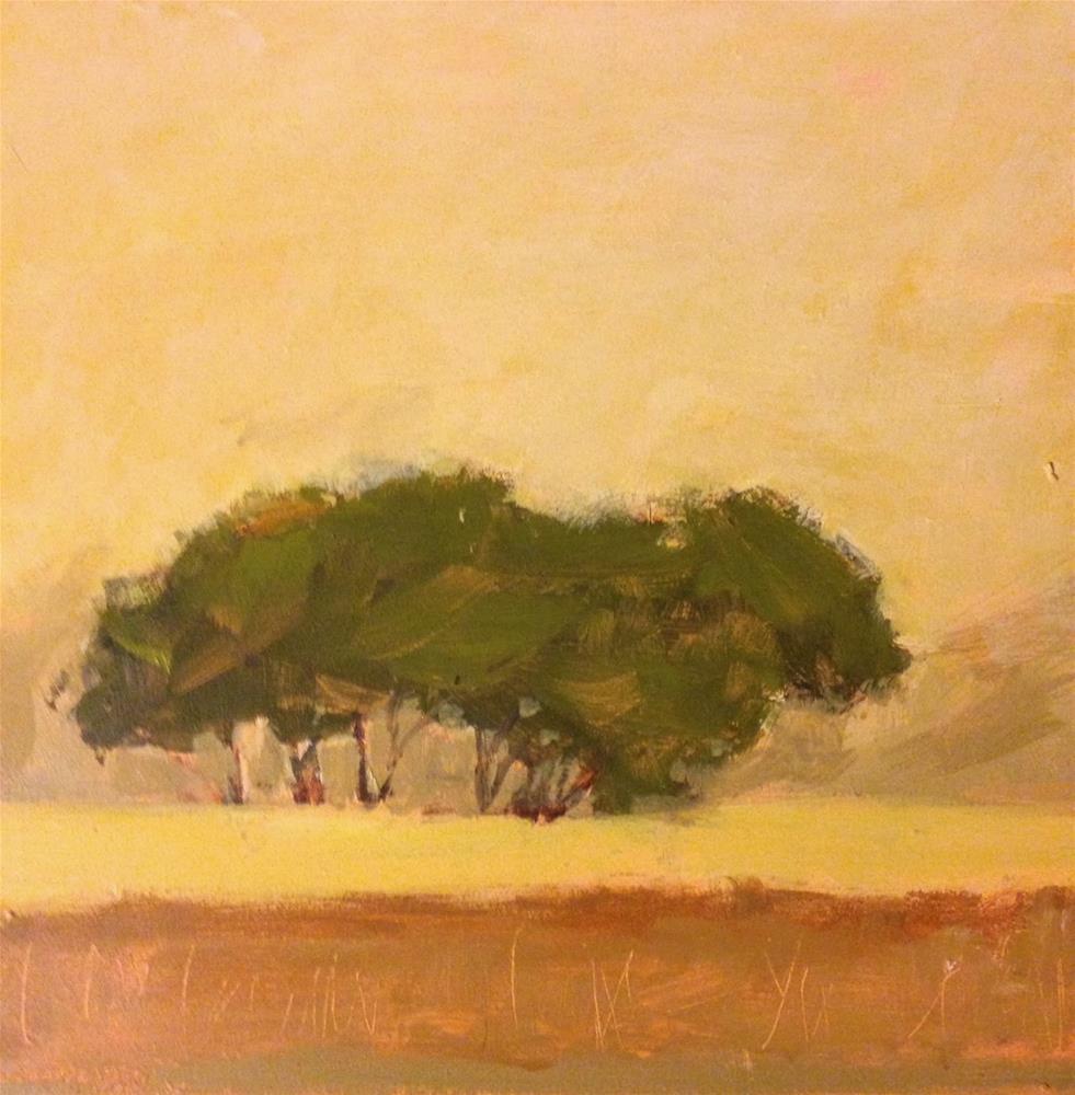 """Tree, 8x8 inch oil painting by Kelley MacDonald"" original fine art by Kelley MacDonald"