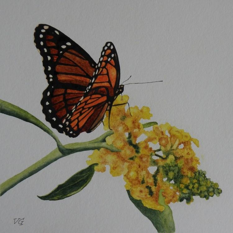 """""""Butterfly 2"""" original fine art by Vicki Greene"""