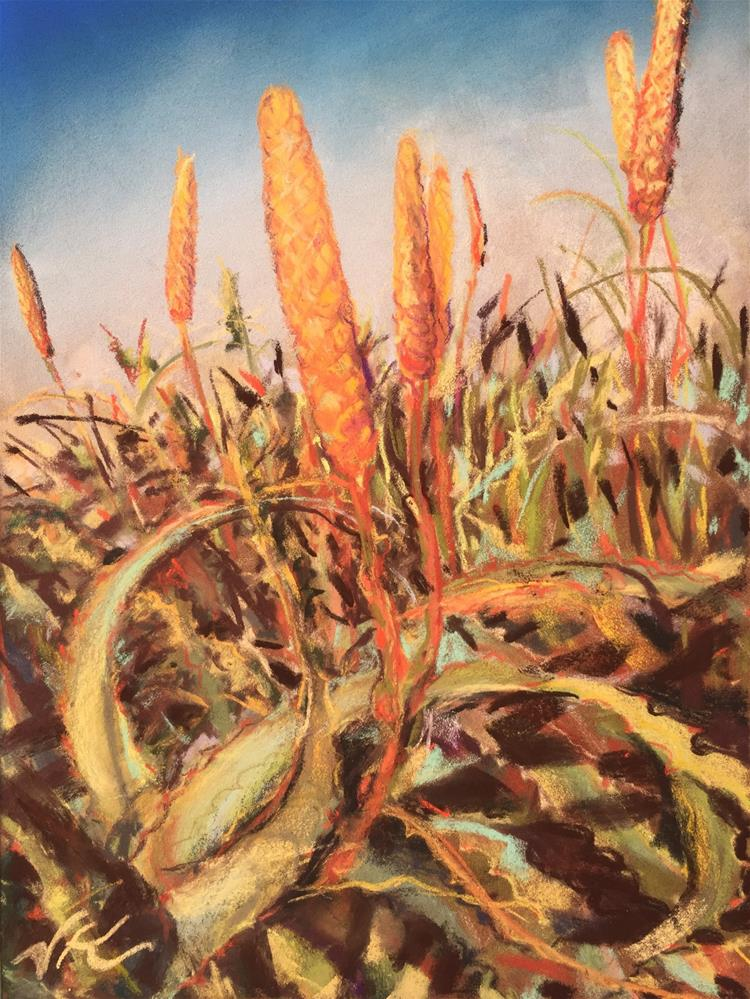 """Aloe - Coastal California"" original fine art by Jean Krueger"