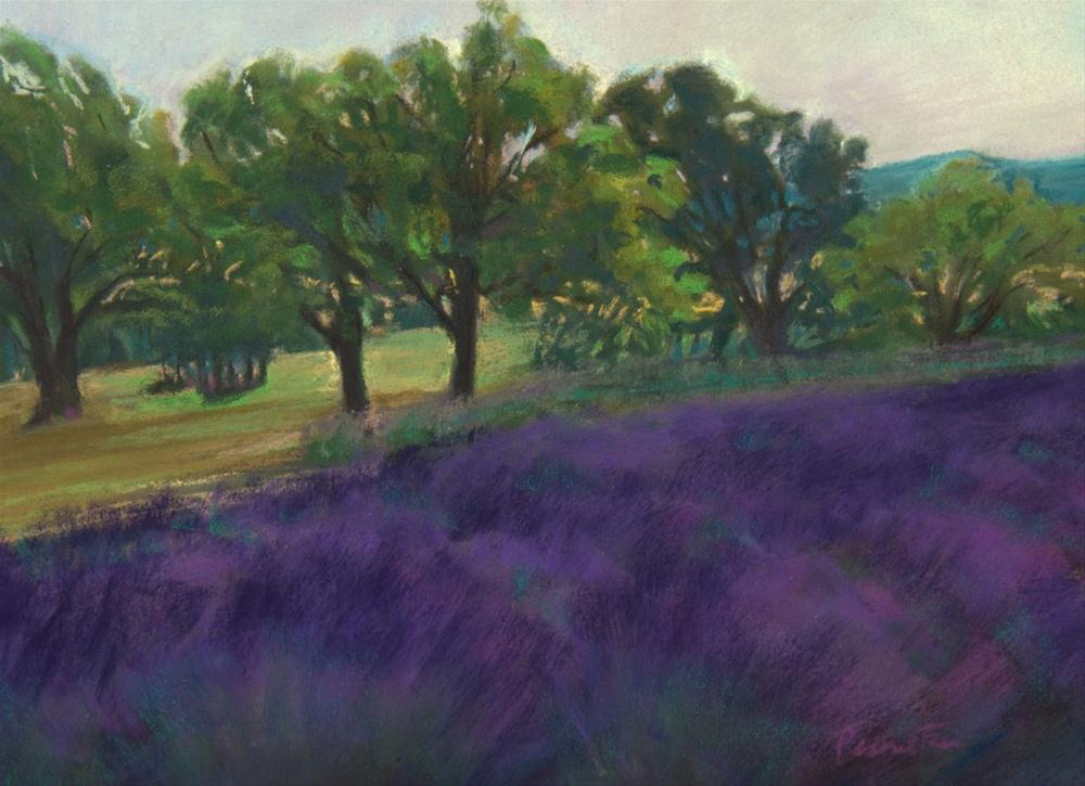 """Sunset at the Lavender Farm"" original fine art by Sarah Peroutka"