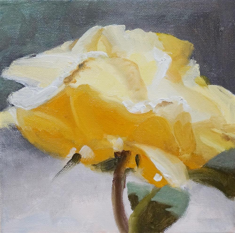 """Winter Blooming Rose"" original fine art by Catherine Van Berg"