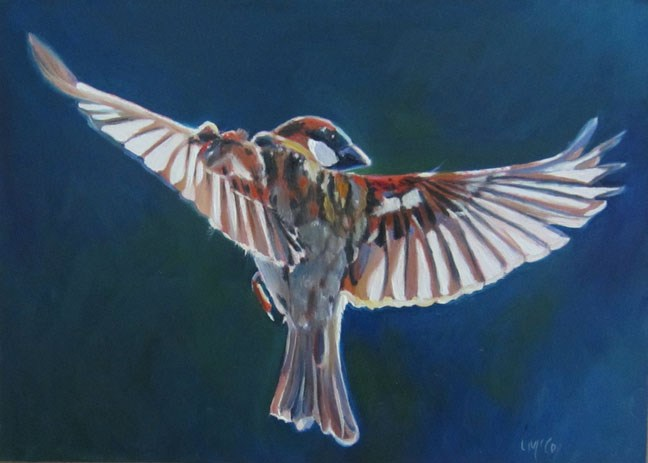 """Homeward Bound, Sparrow in Flight"" original fine art by Linda McCoy"
