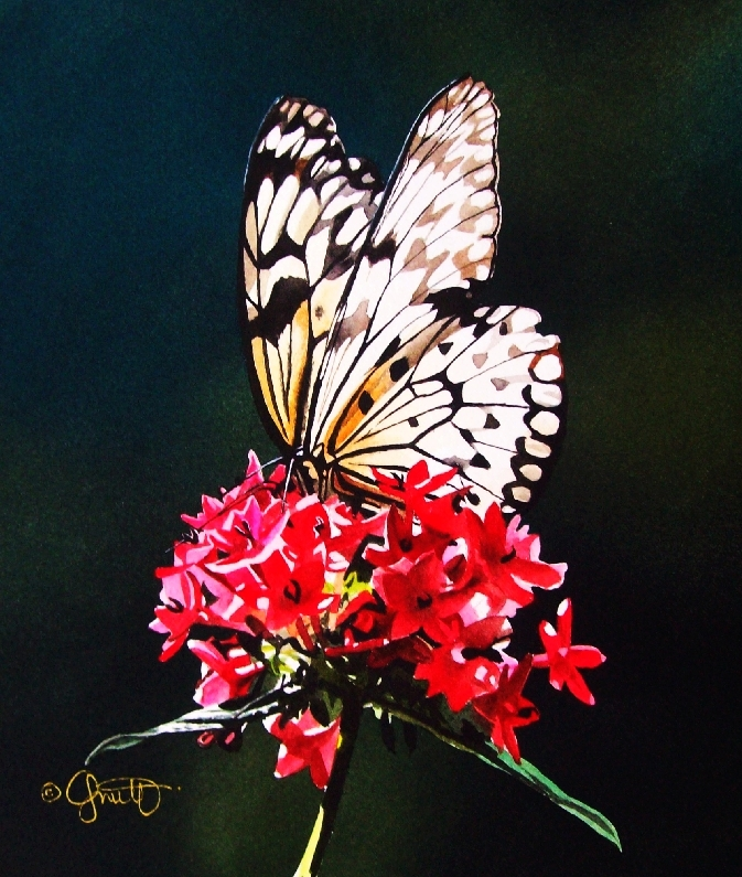 """""""The Queen on her Throne"""" original fine art by Jacqueline Gnott, TWSA, WHS"""