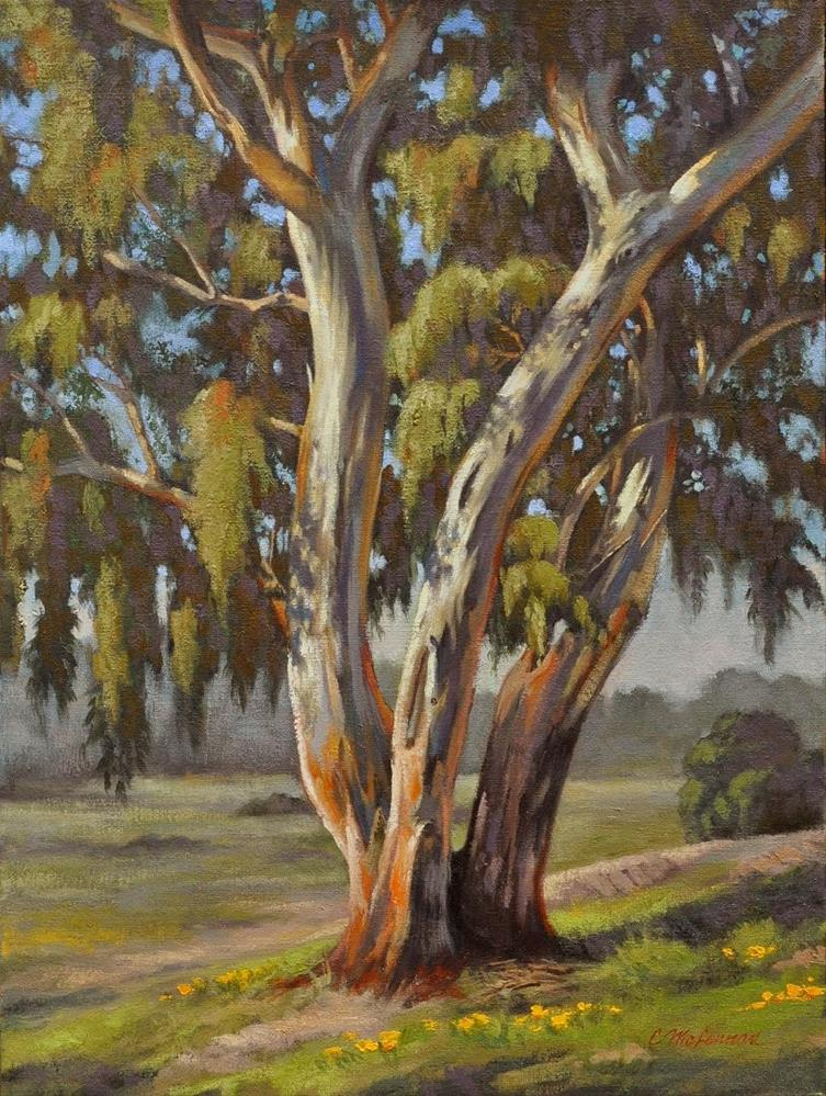"""Sunny Eucalyptus"" original fine art by Connie McLennan"